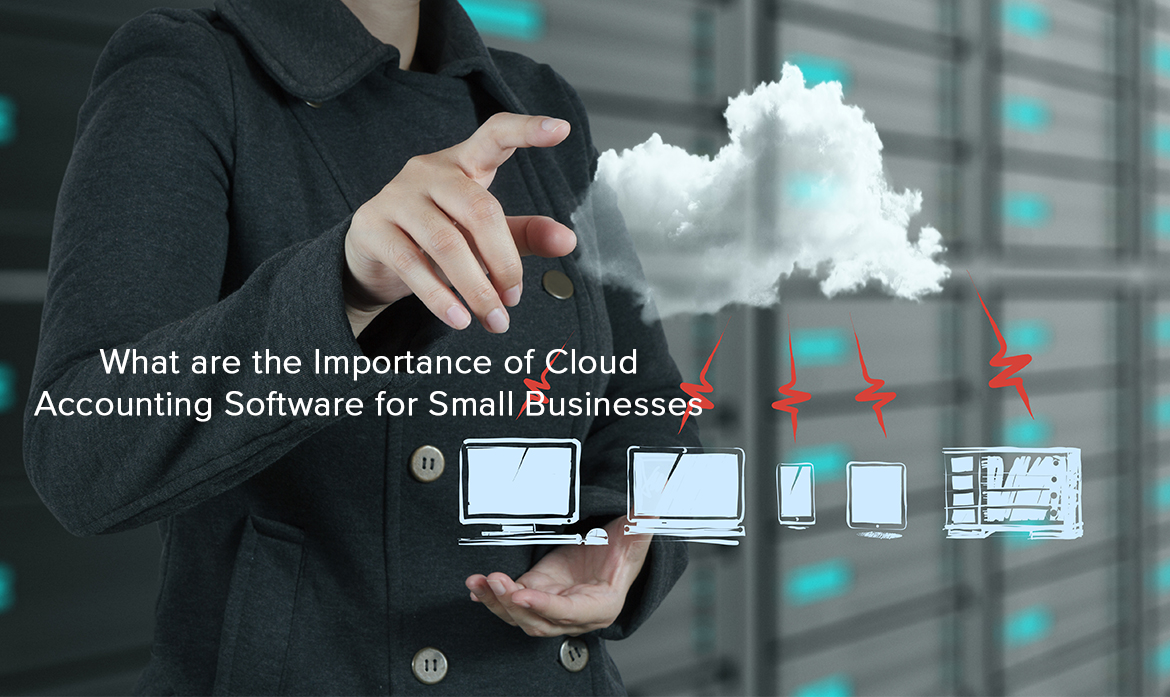 What are the Importance of Cloud Accounting Software for Small Businesses ?